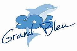 SOS GRAND BLEU